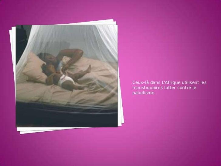 Ceux-là dans L'Afrique utilisent lesmoustiquaires lutter contre lepaludisme.