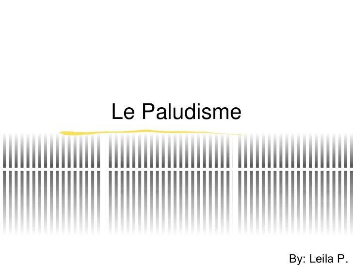 Le Paludisme By: Leila P.