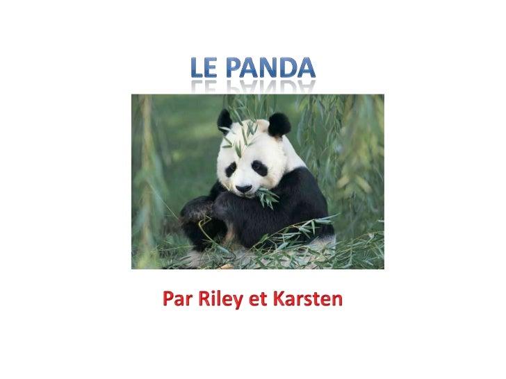 • Les pandas mangent les fruits et le bambou.