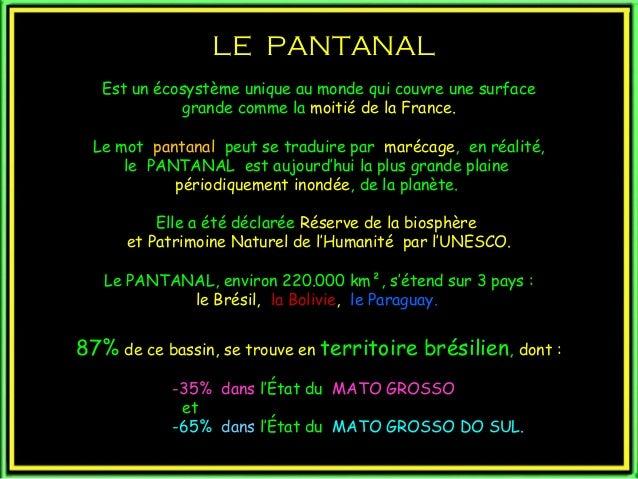 LE PANTANALLE PANTANAL Est un écosystème unique au monde qui couvre une surface grande comme la moitié de la France. Le mo...