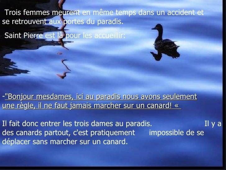 Le Paradis et les Canards Slide 2