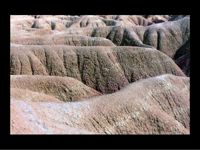 Un petit bout de désert, aride. . .