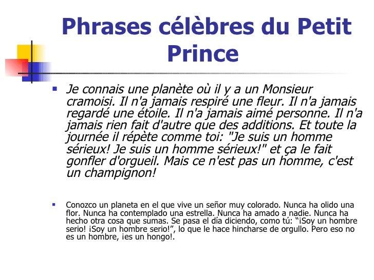 resume sur le petit prince proofreadingwebsite web fc2