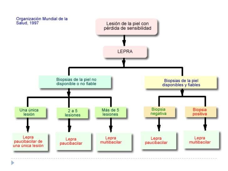 TUBERCULOIDES, BT, INDETERMINADOS        MITSUDA +    P    A    U    C    IC    BA    AS    CO    IS    L    A    R    E  ...