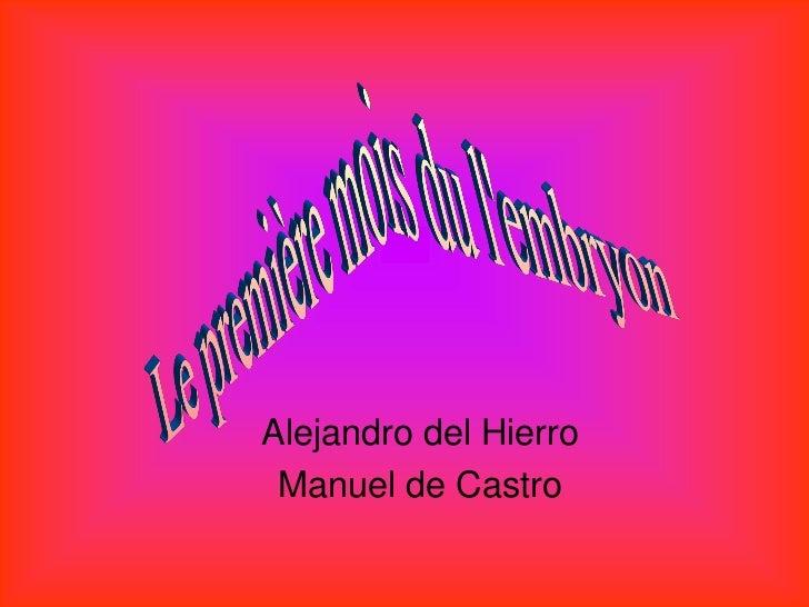 Alejandro del Hierro Manuel de Castro