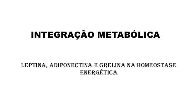 INTEGRAÇÃO METABÓLICA  Leptina, adiponectina e Grelina na Homeostase Energética
