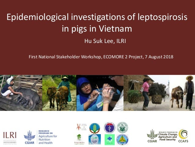 Epidemiological investigations of leptospirosis in pigs in Vietnam Hu Suk Lee, ILRI First National Stakeholder Workshop, E...