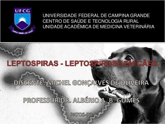 UNIVERSIDADE FEDERAL DE CAMPINA GRANDE CENTRO DE SAÚDE E TECNOLOGIA RURAL UNIDADE ACADÊMICA DE MEDICINA VETERINÁRIA