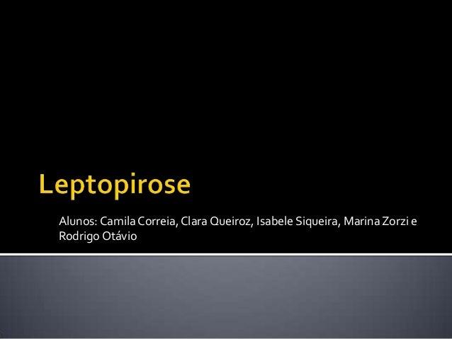 Alunos:CamilaCorreia, Clara Queiroz, Isabele Siqueira, MarinaZorzi eRodrigoOtávio
