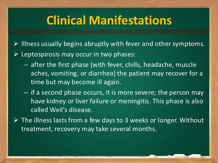 Clinical Manifestations Illness usually begins abruptly with fever and other symptoms. Leptospirosis may occur in two ph...
