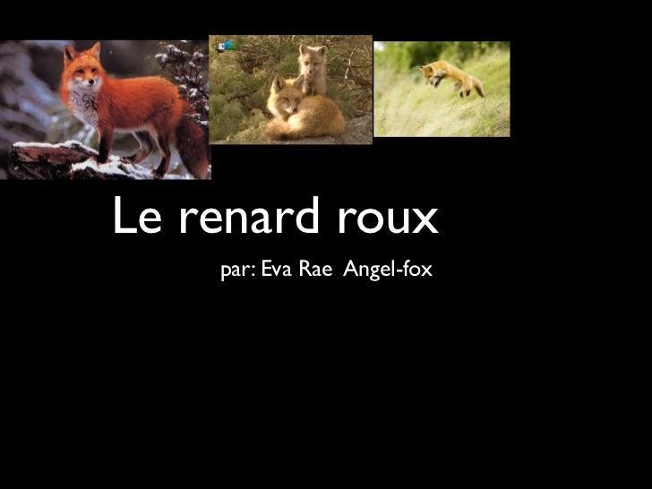 Le renard roux    par: Eva Rae Angel-fox