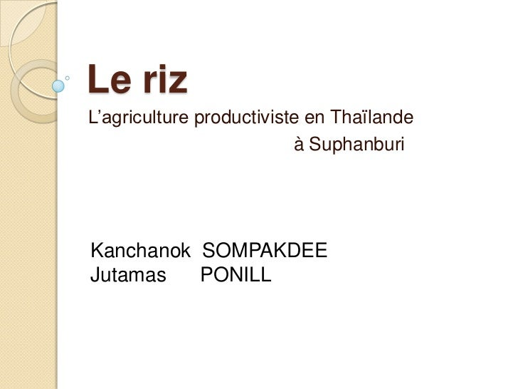Le rizL'agriculture productiviste en Thaïlande                          à SuphanburiKanchanok SOMPAKDEEJutamas   PONILL