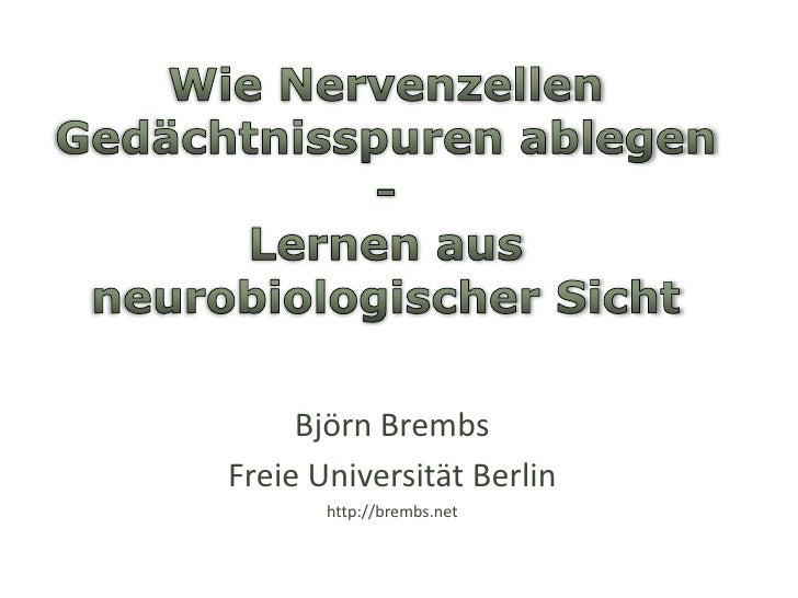Wie Nervenzellen Gedächtnisspuren ablegen -Lernen aus neurobiologischer Sicht<br />Björn Brembs<br />Freie Universität Ber...