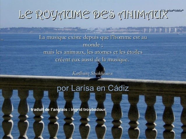 por Larísa en Cádizpor Larísa en Cádiz La musique existe depuis que l'homme est auLa musique existe depuis que l'homme est...
