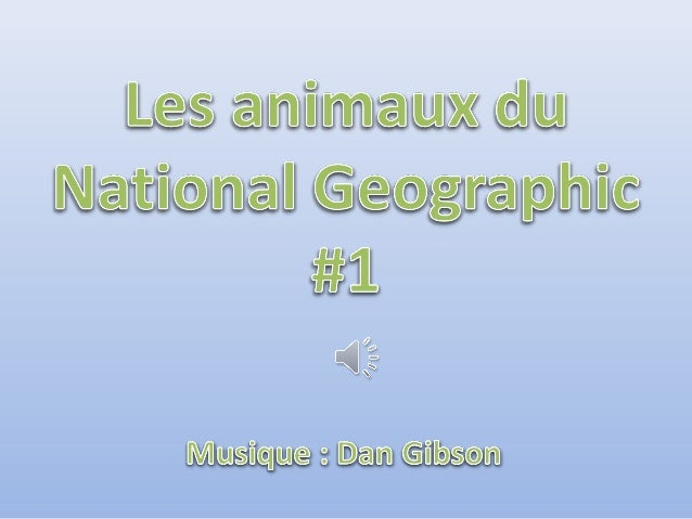 Les animaux-du-national-geographic-1 Slide 2