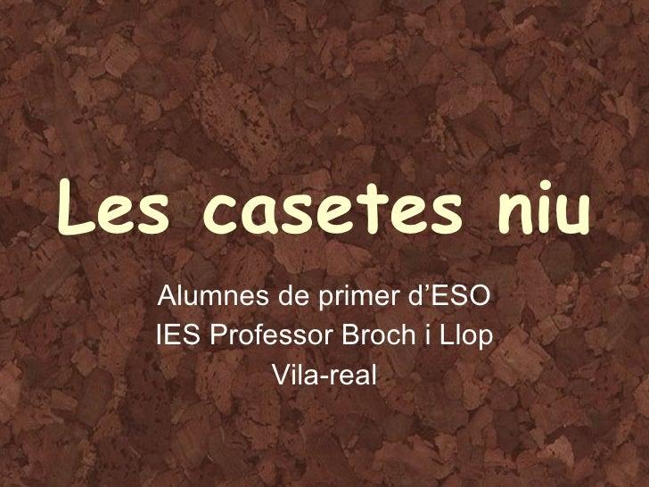 Les casetes niu Alumnes de primer d'ESO IES Professor Broch i Llop Vila-real