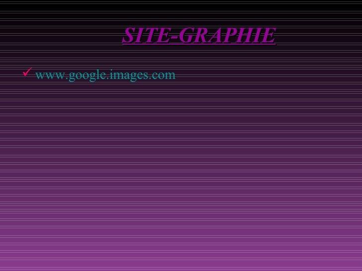 SITE -GRAPHIE <ul><li>www.google.images.com </li></ul>
