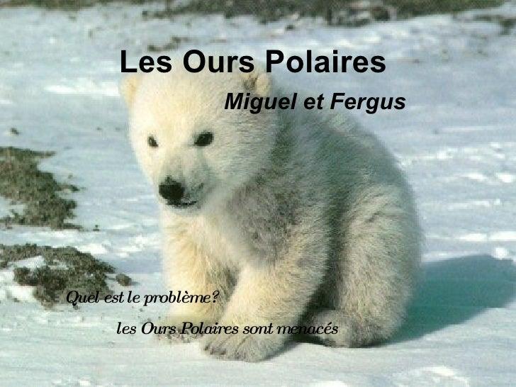 Les Ours Polaires   Miguel et Fergus Quel est le problème?  les Ours Polaires sont menacés
