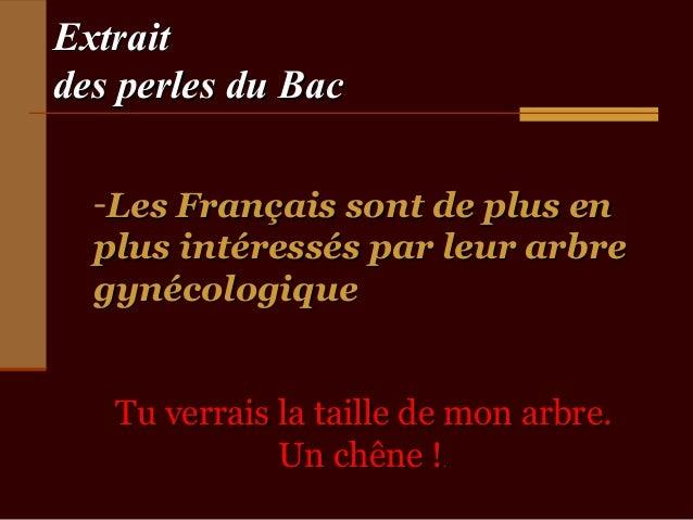 Extraitdes perles du Bac  -Les Français sont de plus en  plus intéressés par leur arbre  gynécologique   Tu verrais la tai...