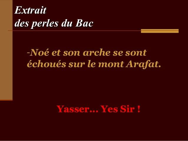 Extraitdes perles du Bac  -Noé et son arche se sont  échoués sur le mont Arafat.         Yasser... Yes Sir !