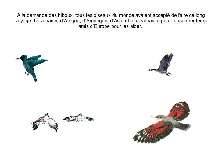 A la demande des hiboux, tous les oiseaux du monde avaient accepté de faire ce long voyage. Ils venaient d'Afrique, d'Amér...