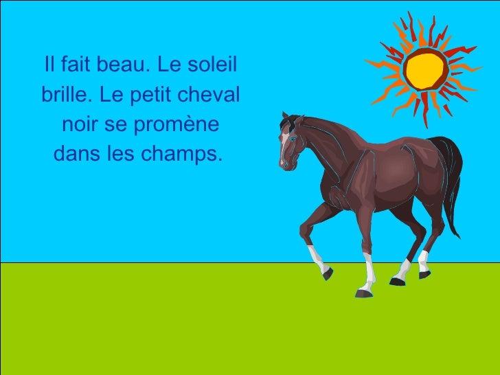 Il fait beau. Le soleil brille. Le petit cheval noir se promène dans les champs.