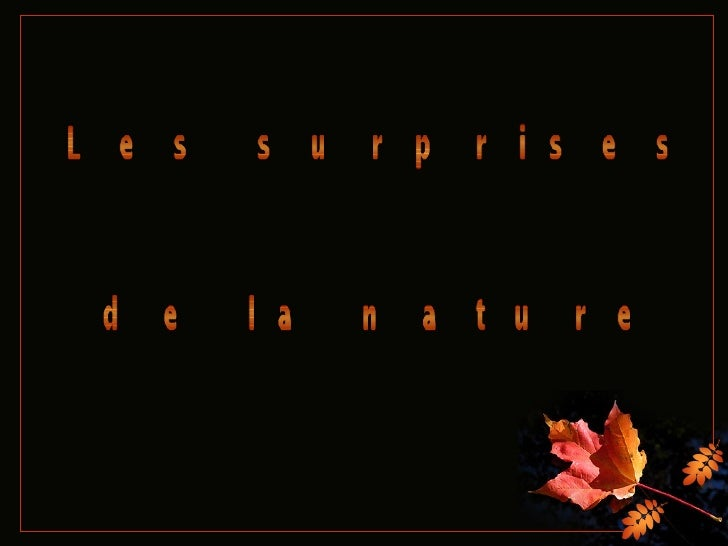 Les surprises  de la nature