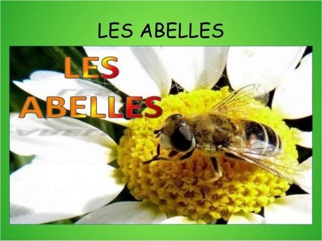 LES ABELLES