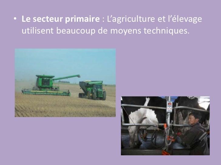 Le secteur primaire: L'agriculture et l'élevage utilisent beaucoup de moyens techniques.<br />