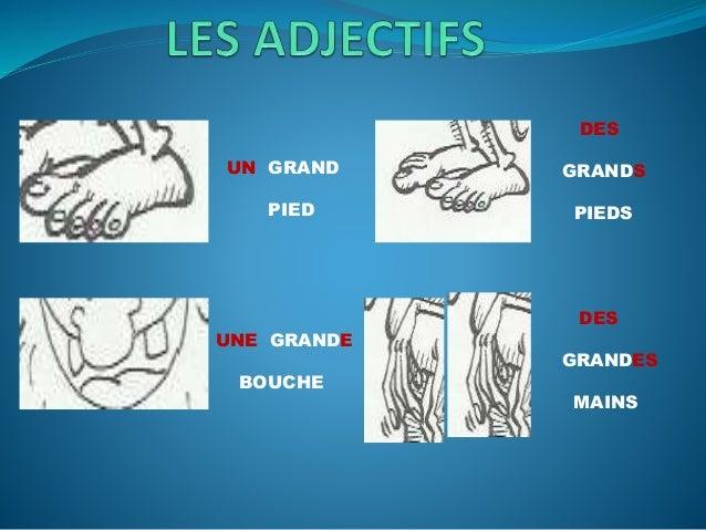 Les adjectifs Slide 3