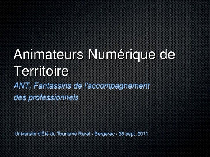 Animateurs Numérique deTerritoireANT, Fantassins de laccompagnementdes professionnelsUniversité dÉté du Tourisme Rural - B...