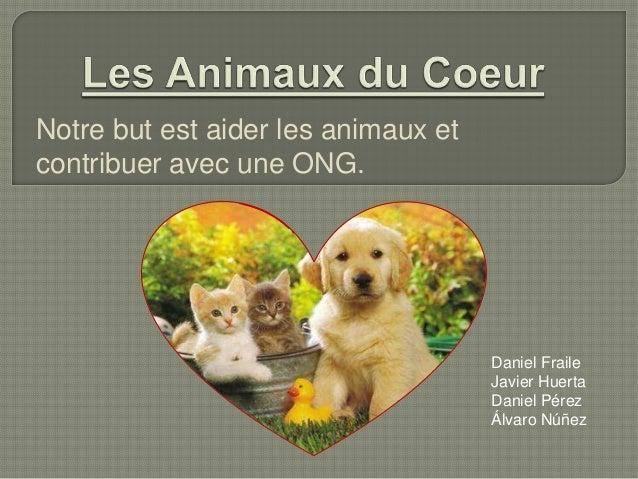 Notre but est aider les animaux et contribuer avec une ONG.  Daniel Fraile Javier Huerta Daniel Pérez Álvaro Núñez