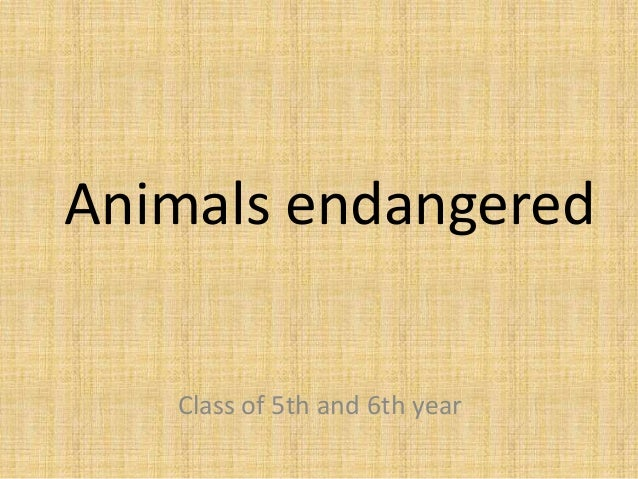 Animals endangered Class of 5th and 6th year