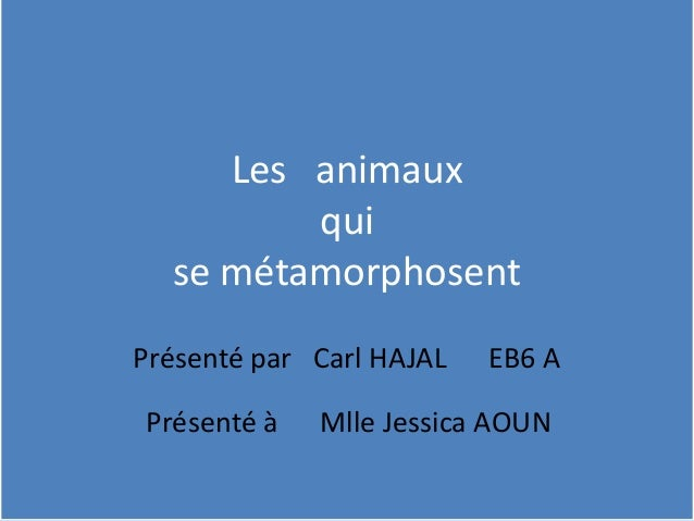 Les animaux qui se métamorphosent Présenté par Carl HAJAL EB6 A Présenté à Mlle Jessica AOUN