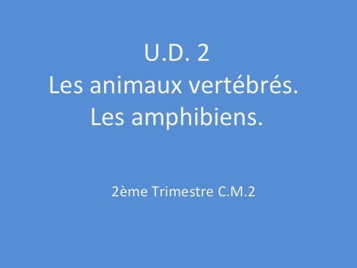 U.D. 2 Les animaux vertébrés.  Les amphibiens. 2ème Trimestre C.M.2
