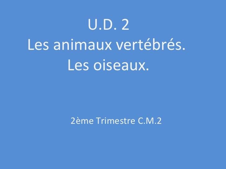 U.D. 2 Les animaux vertébrés.  Les oiseaux. 2ème Trimestre C.M.2