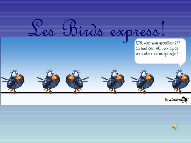 Les Birds express!