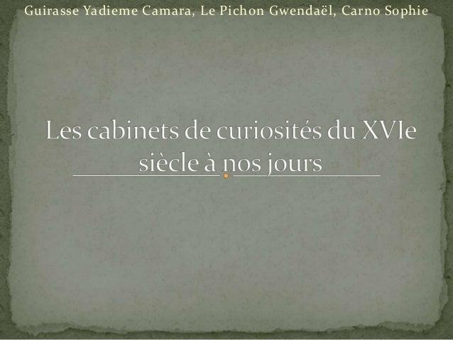 Guirasse Yadieme Camara, Le Pichon Gwendaël, Carno Sophie