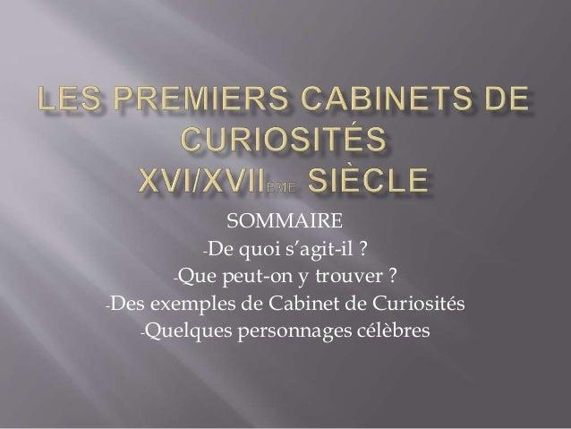 SOMMAIRE -De quoi s'agit-il ? -Que peut-on y trouver ? -Des exemples de Cabinet de Curiosités -Quelques personnages célèbr...
