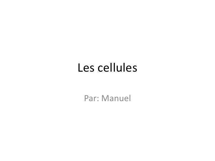 Les cellules <br />Par: Manuel<br />