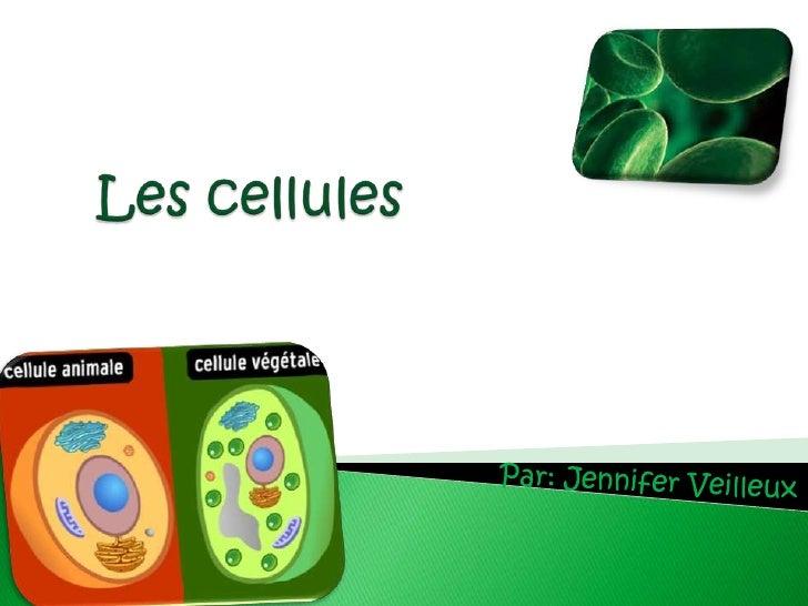 Les cellules<br />Par: Jennifer Veilleux<br />