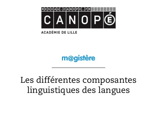 Les différentes composantes linguistiques des langues