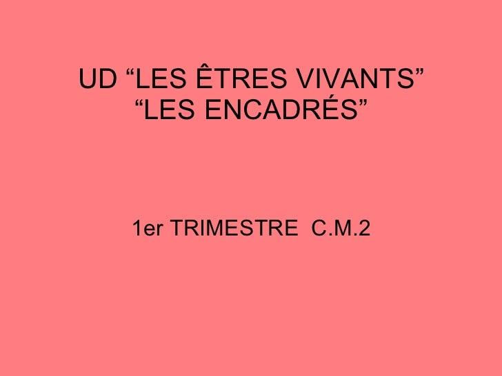 """UD """"LES ÊTRES VIVANTS"""" """"LES ENCADRÉS"""" 1er TRIMESTRE  C.M.2"""