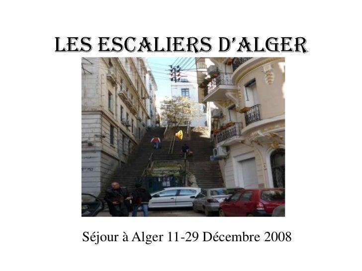 Les escaLiers d'aLger  Séjour à Alger 11-29 Décembre 2008