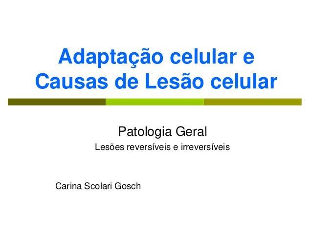 Adaptação celular eCausas de Lesão celular               Patologia Geral          Lesões reversíveis e irreversíveis Carin...