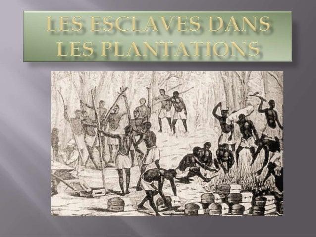L'esclavage aux États-Unis (1619-1865) commence peu après l'installation des premiers colons britanniques en Virginie et s...
