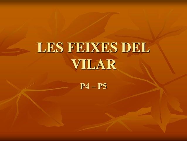 LES FEIXES DEL VILAR P4 – P5