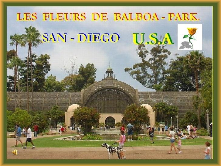 Les Fleurs De Balboa Park J50 Slide 1