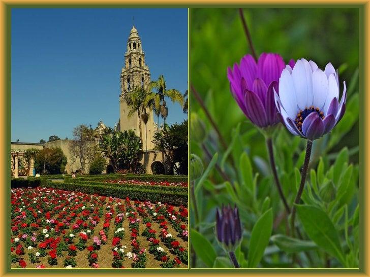 Les Fleurs De Balboa Park J50 Slide 3