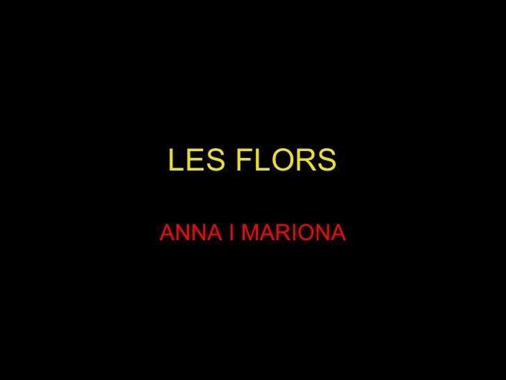 LES FLORS ANNA I MARIONA